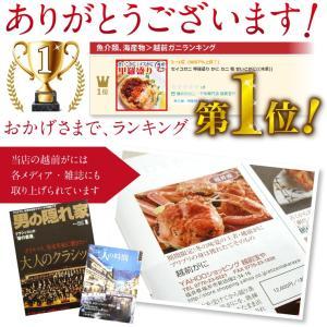 セイコガニ 甲羅盛り 1個(単品) かに カニ 蟹 せいこがに 香箱ガニ せこがに 越前ガニ  香箱ガニ ((冷凍)) etizentakaraya 09