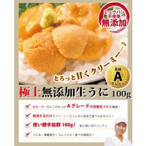 極上 生ウニ 無添加 100g  ((冷凍))|etizentakaraya|02
