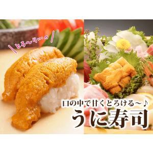 極上 生ウニ 無添加 100g  ((冷凍))|etizentakaraya|04