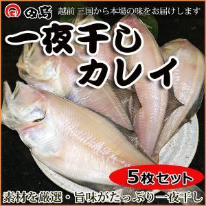 一夜干し カレイ(5枚セット)福井県三国港 越前名産ひもの [冷凍]|etizenwakasa