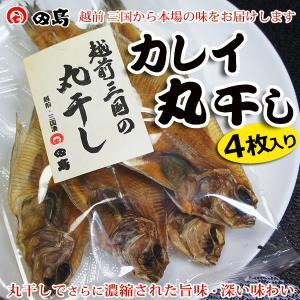 丸干し カレイ(4枚セット)福井県三国港 越前名産 ギフト