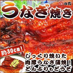うなぎ焼き(蒲焼)ふっくら肉厚ジューシー 約30cm 敬老の日 ギフト [冷凍]|etizenwakasa