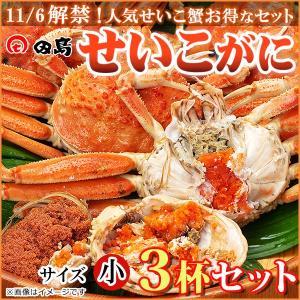 せいこがに3杯セット(早割)福井県産せいこ蟹(セイコガニ・セコガニ)約100〜120g(小)×3杯(10月末迄のご予約で10%割引)御歳暮 ギフト  [冷蔵]|etizenwakasa