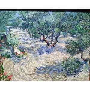 油絵  ゴッホ_ オリーブ果樹園|eurasia-art