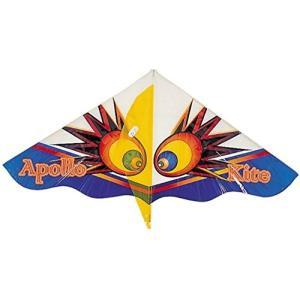 スカイカイト(LL) 000043240 定番柄の洋凧です。※色柄は選べません。 対象年齢:3歳以上...