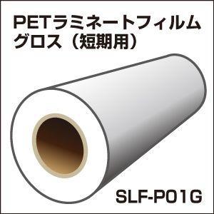 短期PETラミネートフィルム(グロス)(31cm×10mロール){SLF-PT01G-W}|europort
