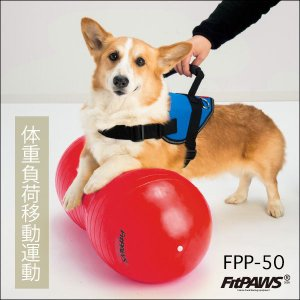 FitPAWS 犬用エクササイズ用具(バランスボール) ピーナッツ(赤)FPP-50 送料込(商品13,867円+送料972円=合計14,839円)|eva