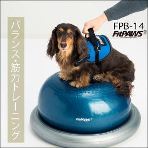 FitPAWS ドーナッツ(バランスボール) FPD-L 送料込(商品9,590円+送料756円=合計10,346円)|eva