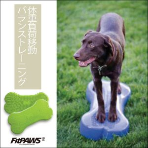 FitPAWS 犬用エクササイズ用具(バランスボール) ボーン(青/緑)K9FIT 送料込(商品15,358円+送料756円=合計16,114円)|eva
