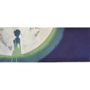 RumiRockxEVA てぬぐい 月に綾波|evastore