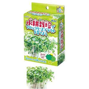 簡単・手のひら実験キット 水耕栽培でブロッコリースプラウトを育てよう 5個|event-ya