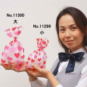 バレンタインラッピング用品  ビニールラッピングバッグ(小) タイ付 20枚|event-ya