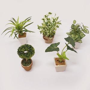 テーブル用グリーンポット 5個組 H20cm〜25cm / 装飾 飾り 緑 造花 小物|event-ya