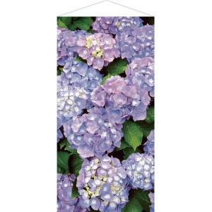 タペストリー あじさい H180cm / ディスプレイ 飾り 装飾 紫陽花 梅雨|event-ya