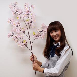 桜装飾 桜大枝 105cm 12本セット / 飾り ディスプレイ 春|event-ya