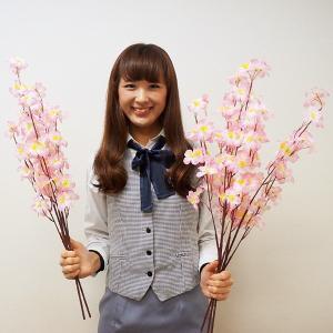 桜装飾 桜中枝 70cm 24本セット / 飾り ディスプレイ 春|event-ya