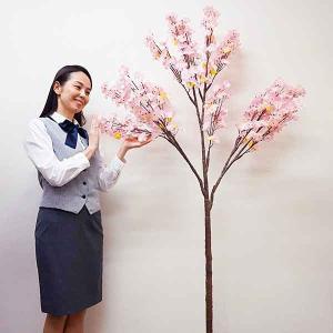 桜装飾 桜立ち木 H200cm / 飾り ディスプレイ 春|event-ya