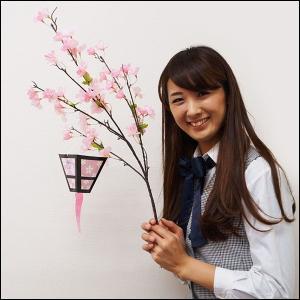 桜装飾 桜ボンボリしだれ L66cm / 飾り ディスプレイ 春/動画有|event-ya