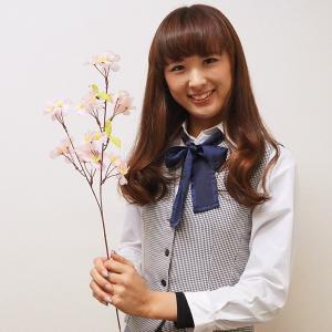 桜装飾 桜小枝 60cm 36本セット / 飾り ディスプレイ 春|event-ya