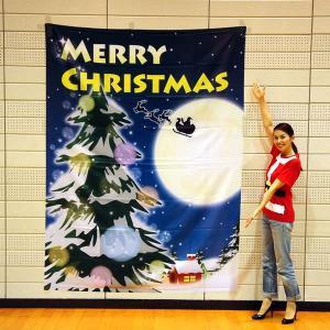 クリスマス装飾 クリスマスバックスクリーンシート H240cm×W180cm 月夜の雪|event-ya