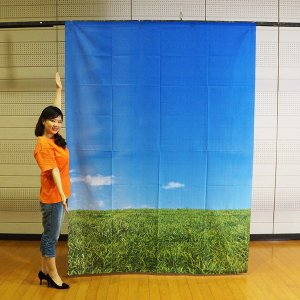 春の装飾 春のバックスクリーンシート 空と草原 H240cm×W175cm / 飾り ディスプレイ|event-ya