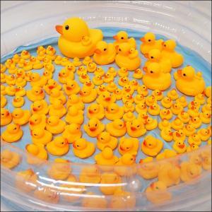 ぷかぷかアヒル大中小すくいどりイベント 157個/おもちゃ 景品 お祭り 縁日|event-ya