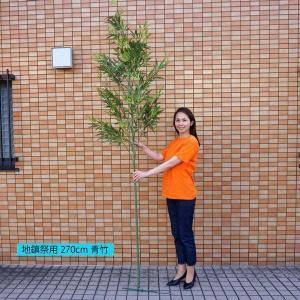 本格竹・笹(260cm) [大型商品]|event-ya