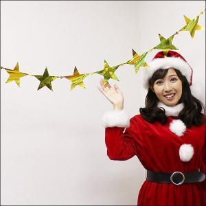 クリスマス装飾 メッキスターコード L180cm【ディスプレイ・飾り】|event-ya