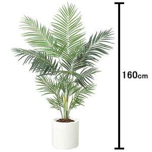 人工樹木 アレカパームツリー 160cm 白い鉢付|event-ya