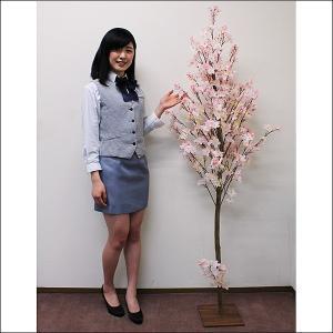 桜装飾 ナチュラル桜立ち木 H180cm / 飾り ディスプレイ 春|event-ya