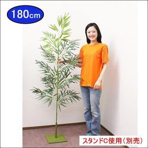 七夕本格笹・リアル青竹(180cm) 組立式2分割|event-ya