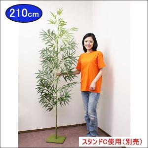 七夕本格笹・リアル青竹(210cm)|event-ya