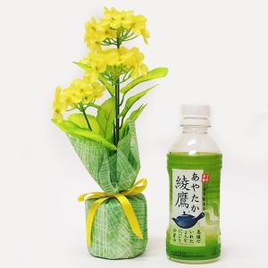 春の装飾 菜の花ラッピングポット H26cm / 飾り ディスプレイ|event-ya