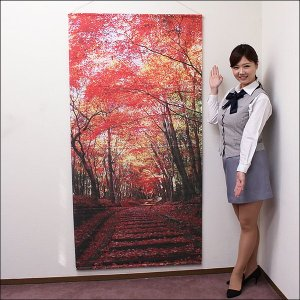 タペストリー 秋 秋の道 防炎加工 / 装飾 ディスプレイ 飾り|event-ya