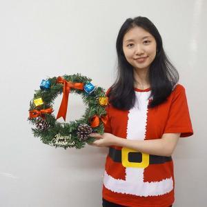 クリスマス装飾 バリューリース 30cm / 飾り付け ディスプレイ デコレーション|event-ya