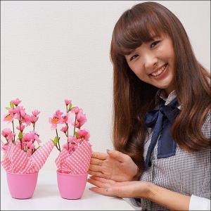 ひな祭り桃ポット H26cm 2個セット / ディスプレイ 飾り 雛祭り|event-ya