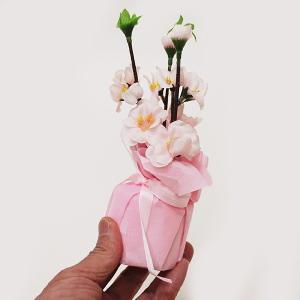 ひな祭り桃ラッピングポット H19cm / ひなまつり 装飾 飾り|event-ya