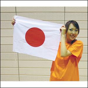 日の丸国旗 手持ち応援用 34cm×43cm|event-ya