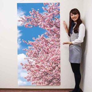 桜タペストリー 桜道満開 防炎加工 L180cm / 春 装飾 飾り ディスプレイ|event-ya
