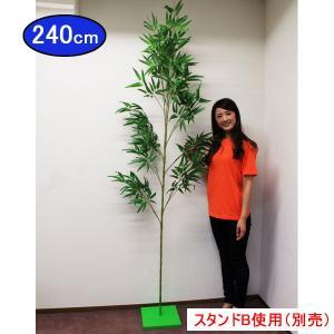 / オススメ 本格七夕笹・リアル節(240cm) [動画有り]|event-ya