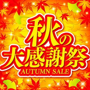 テーマポスター 秋の大感謝祭 10枚入 W38cm両面|event-ya