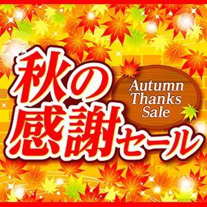 テーマポスター 秋の感謝セール 10枚入 W38cm両面|event-ya