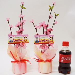 ひな祭りPOP付 桃ラッピングポット H34cm 2個セット / ディスプレイ 飾り 雛祭り|event-ya