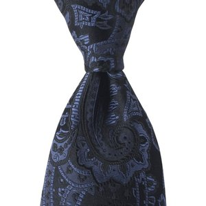 ネクタイ ペイズリー ソリッド シルク 日本製 プレゼント ギフト お誕生日 記念日 結婚式 ロイヤル ブルー|evergrays