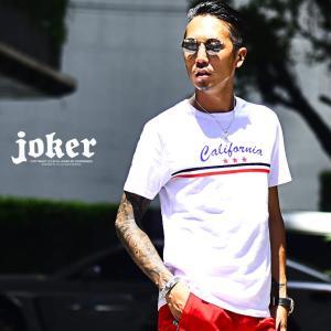 メンズ Tシャツ 半袖 カットソー Vネック 大きいサイズ 小さいサイズ LL xl xxl 秋 秋...
