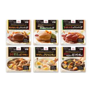 介護食 レトルト 区分3 エバースマイル 洋食ムース 6種お試しセット(計6食)