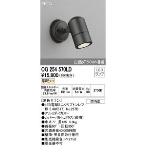 オーデリック LED屋外灯 スポットライト 電球色 【OG254570LDS】|evillage