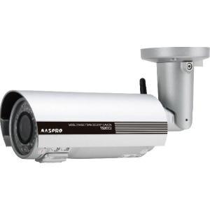 マスプロ電工 中距離撮影用カメラ 屋外用 TS2CC2|evillage
