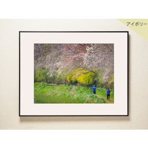 【片岡正一郎】オリジナルプリント「桜」No.10 A3額付き|exa-photo