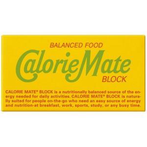 大塚製薬 カロリーメイト ブロック フルーツ 2本×20個|excel-fukuoka